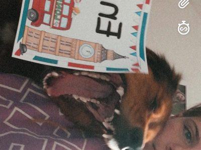 Groß St. Florian, NMS Groß St. Florian Leider findet mein Hund Englisch langweilig.
