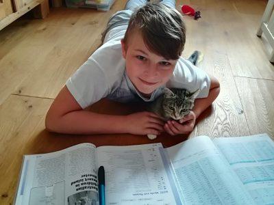 Burgenland, BG/BRG/BORG Oberschützen  Ich sitze zu Hause und lerne Englisch