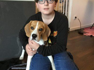 München, Thomas-Mann-Gymasium. Das bin ich mit Ruby meinem englischen Jagdhund, einem Beagle.