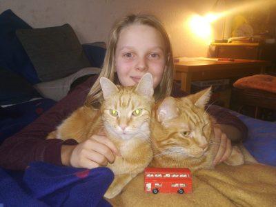 Hi das sind meine Katzen Leo und Teo mir mir und einem englischen Bus .