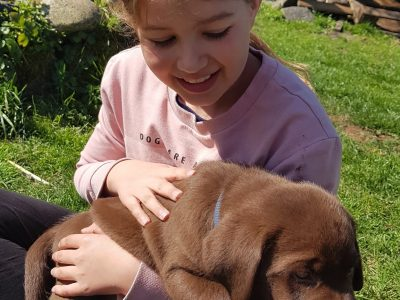 My name ist Charlotte Kos. I live in Stolberg by NRW . I`m eleven years old . On the picture can you see me and my dog Ida.