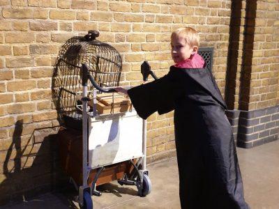 Jonas, Lübeck, Johanneum: Let's go to Hogwarts!