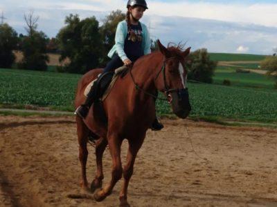 Wertingen Gymnasium  Ich beim reiten im englischen Stil