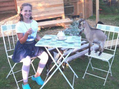 """Mössingen, Evangelisches Firstwald-Gymnasium Kommentar: """"Teatime with my goat Cookie"""""""