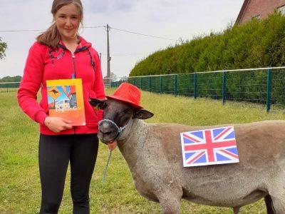 45721 Haltern am See , Alexander Lebenstein Realschule   Name: Alina Böntert   -->  my english sheep