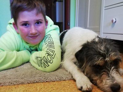 Stadt: Selb Schule: Staatliche Realschule Selb Das ist mein Parson Russell Terrier Freddy. Der Parson und Jack Russell ist eine alte Englische Hunderasse.