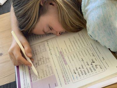 Bühl Windeck-Gymnasium Englisch lernen im Traum!
