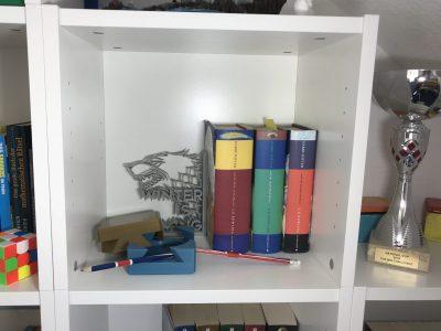 Mein Bücherregal ist eine Sammlung von allen Sachen, die mir etwas wert sind, und ist damit ein Spiegel meiner selbst. Neben den phantastischen Harry Potter Bücher (auf Englisch natürlich) finden sich dort auch alle Preise, die ich bei BIG CHALLENGE gewonnen habe.