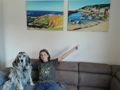 Magdeburg / Geschwister Scholl Gymnasium / Klasse: 5/4 Auf dem Foto bin ich (Franz-Ferdinand) mit meinem Hund Duke.  Er ist ein English Setter und hat einen englischen Namen: Duke (auf deutsch Herzog).  Ich zeige auf 2 Bilder an der Wand. Diese Fotos sind in Cornwall entstanden.  Dort habe ich mit meiner Familie 2017 Urlaub gemacht.