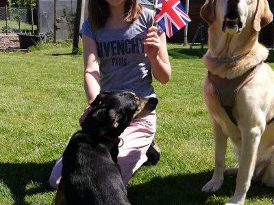 Nach Teilnahme an der big challenge 2020 eine Runde chillen mit meinen Hunden Josy und Gina ( Ihre königliche Majestät)
