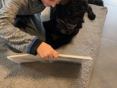 BIBERACH AN DER RISS, WIELAND GYMNASIUM  Unser Hund Rico und ich beim Englischlernen!