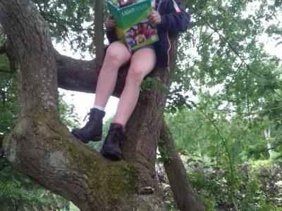 Embsen, IGS Embsen Ich lerne die Englischvokabeln sehr gerne in unserem Garten. Der Kletterbaum ist dafür perfekt geeignet, weil ich da oben meine   ruhe hab und mich da oben auch niemand hört ;). Wenn ich nicht auf den Baum gehe liebe ich es auch in der Hängematte zu lernen.
