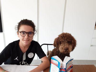 Collège La Villa Blanche de MENTON. Je vous présente Albert .... my dog loves English ! Nora