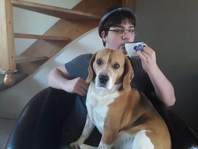 Steenvoorde collège notre dame de lourdes   Une petite tasse de thé avec mon  beagle
