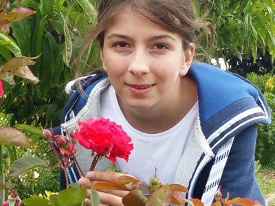 Chartres sainte marie   La fleur anglaise