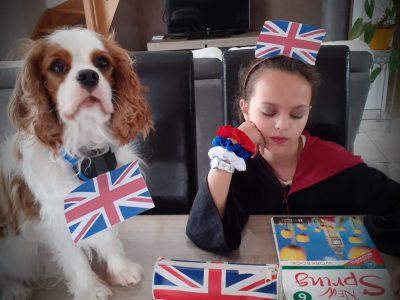 Fougerolles Collège des Combelles  Devoirs d'anglais surveillés par mon chien Pooky !