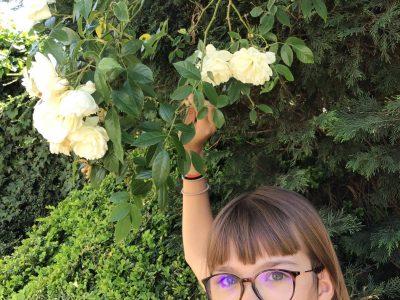 Anzin St Aubin collège  les Louez - Dieu   Ma photo représente l'emblème de l'Angleterre la rose qui est important !