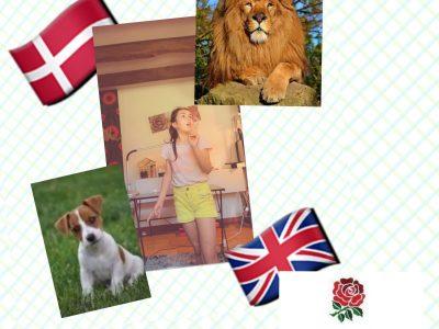 Ville : Aubigny-sur-Nère  Collège : Gérard Philippe   Ma photo : le lion qui est le symbole de l'Angleterre. Le chien ( jack Russel ) chien de l'Angleterre. La rose aussi un grand symbole !