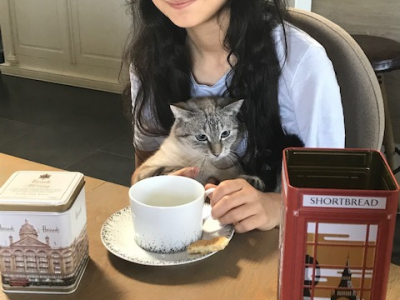Loudun Collège de Chavagnes
