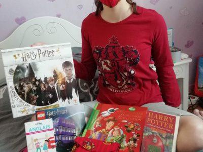 Collège Louis Lumière à Echirolles  I love Harry Potter !!!