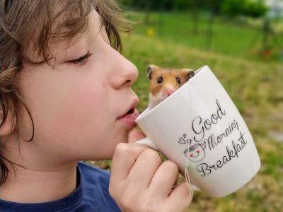 Clérmont-Ferrand  Sainte-Thérèse les cordeliers  Ce matin, c'est petit déjeuner poilus
