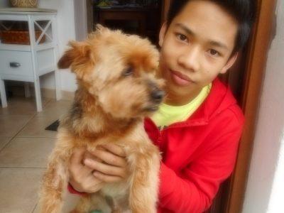 FONTENAY LE COMTE  Collège privé Saint Joseph  Voici mon chien mais il ne connait pas un mot d'anglais … Il ne m'a pas aidé pour le Big challenge !
