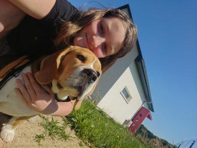 Masevaux, Collège Conrad Alexandre Gérard.  Hi, That's my dog it's a beagle.