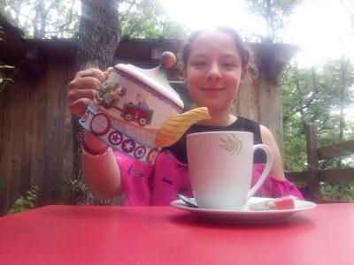COLLEGE SAINT JEAN BAPTISTE DE LA SALLE SITE MONTALEMBERT AVIGNON. Selfie automatique Tea Time in the forest.