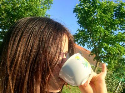 SAINTE MAURE DE TOURAINE  Collège Célestin Freinet  it's good tea!