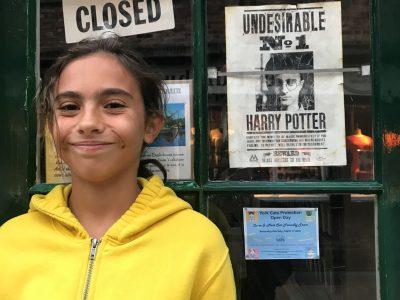 LA-VILLE-DU-BOIS, collège INSTITUT DU SACRE COEUR   A la recherche d'Harry Potter...