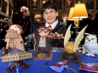 Après avoir vu presque tous les films ''Harry Potter'' pendant le confinement...''The BIG Challenge'' relevé ! Collège Bayard - Grenoble