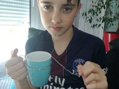 MAYENNE
