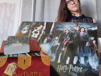 Ville : AVALLON Collège Parcs des Chaumes #Harry Potter en confinement