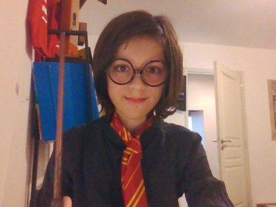 Vouillé Collège La Chaume-LaSalle  You're a wizard Harry.