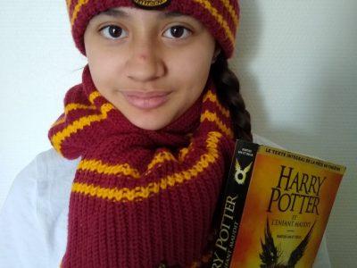 Meaux  ,  Collège Henri IV  Un des héros les plus connu d'Angleterre ⚡ Harry Potter ⚡ .