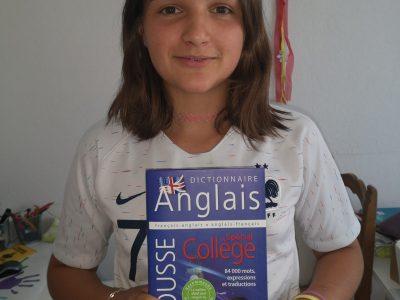 Albi collège BON SAUVEUR  J'aime l'Anglais .