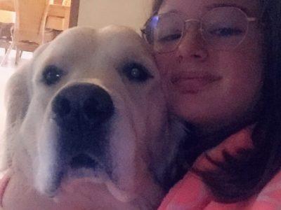 Niederbronn, Collège Charles Munch  Mon chien est un Golden Retriever qui est une race anglaise d'où la photo !