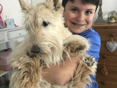 Ville : La Rochelle Nom du Collège : Fénelon Notre Dame  Théo et son Scottish Terrier !!