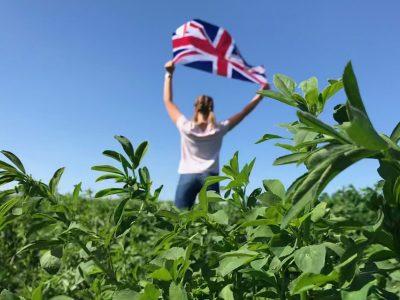 Vive l'anglais !!! Photo de Emilie Boltz  Collège de l'Outre-forêt, Soultz-sous-forêts