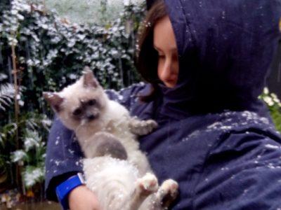 Le Creusot, du Cllege croix menée Cette photo c'est moi et mon chat
