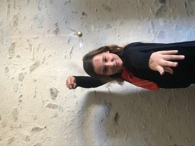 """Saint Philbert de Grand Lieu Collège Lamoricière  Sarah Drouvin  """"Petrificus totalus!"""" souvenir de notre voyage à Londres au mois de janvier!"""