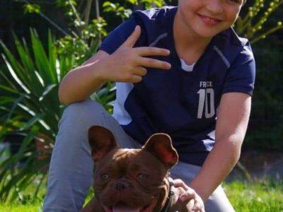 BONJOUR   TEO MATURANA 6e2    collège Grand selve de Grenade sur Garonne   voici une photo de moi avec ma bouledogue Anglais  C'est une race de chien originaire de Grande Bretagne