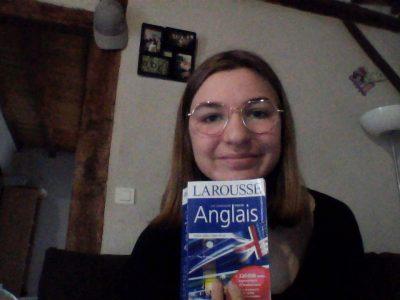 Labrit , collège Henri Emmanuelli.    les dictionnaires d'Anglais sont toujours la pour nous quand on en a besoin.
