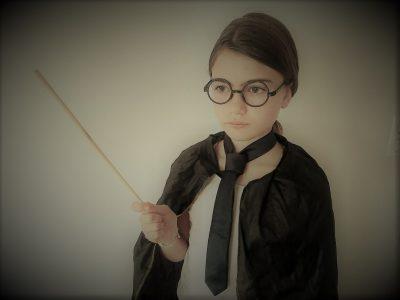 Ville et nom du collège : LA MOTHE ACHARD COLLèGE ST jacques LA FORETE Commentaire : the adventures of Harry Potter