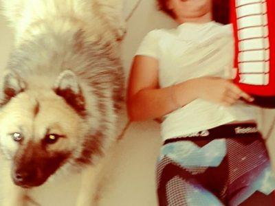 Saint Jeannet  Collège des Baous   Mon chien vient de me sauter sur le ventre