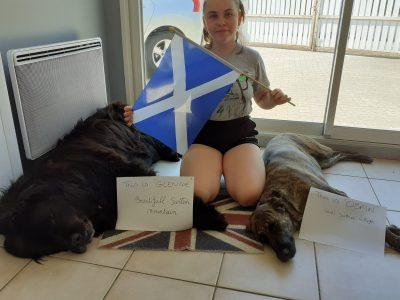 Hello, my name is Lonie Molard. My Collège is Collège de l'Europe at Bourg de Péage. Cette photo montre mes 2 chiens que nous avons appelé: GLENCOE et OBAN, en référence à l'Ecosse que j'ai visité avec ma Maman. J'ai aussi un chat que j'ai appelé Nessie, petit monstre du Loch Ness.  ;-)  Lonie 6e4