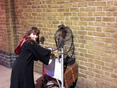 Beauchamp - Collège Montesquieu. Un souvenir de Noël en Angleterre lors de ma visite au Warner Bros Harry Potter London. Une expérience inoubliable !