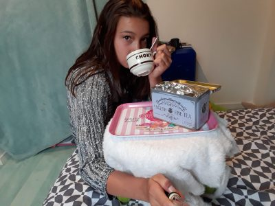 """Je bois  du thé anglais """" Earl Grey """", sur un plateau anglais.  Collège Simone Veil à Elven ."""