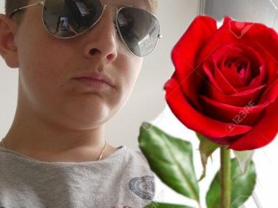 La Rochelle Fénelon Notre Dame  La rose la plus belle fleur le symbole de l'amour et l'emblème de L'Angleterre .